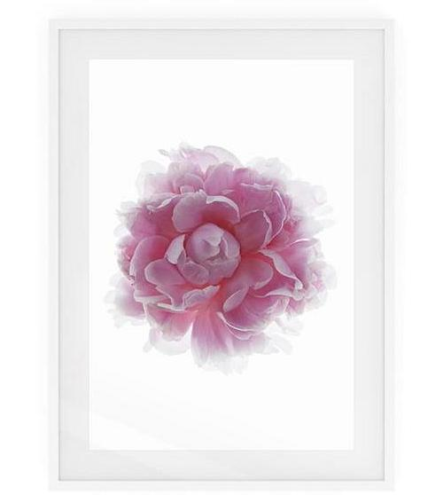 The Blossom Print White Wood Frame Small Two