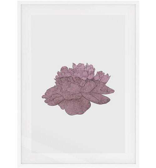 The Flowering Print White Wood Frame Small Dusty Pink