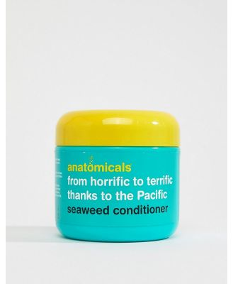 Anatomicals From Horrifc To Terrific Thanks To The Pacific Seaweed Conditioner-No Colour