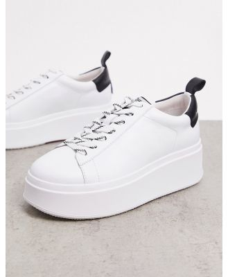 Ash Moon platform sneaker with black back tab in white