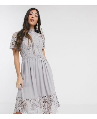 Chi Chi London Petite lace detail skate dress in dove grey