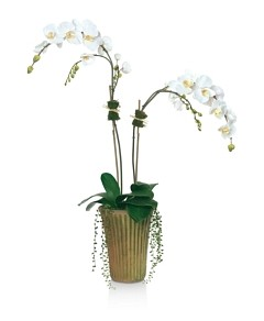 Diane James Home Phalaenopsis Orchid Faux-Floral Arrangement