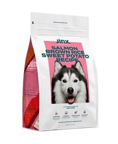 Jinx Salmon, Brown Rice & Sweet Potato Kibble for Adult Dogs - 4 lbs.