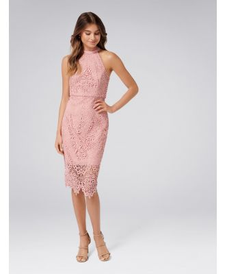 Beverley Lace Pencil Dress - Misty Peony