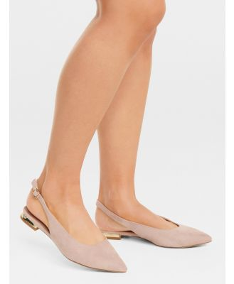 Dakota Metal Trim Pointed Flats - Blush