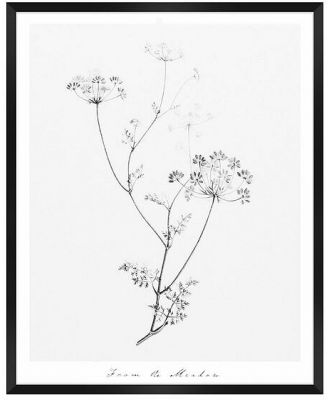 From The Meadow Framed Print 46x67cm (Q) by Freedom