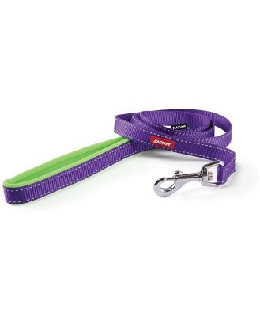 Kazoo Active Nylon Dog Lead 25mm Purple & Lime 120cm