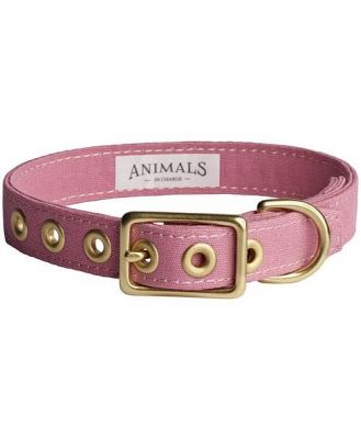 Animals In Charge Dusty Pink + Brass All Weather Collar: Extra