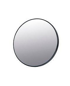 Allure Echo 5x Magnification Suction Mirror