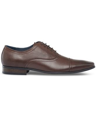 Tarocash Mayall Dress Shoe Chocolate 10