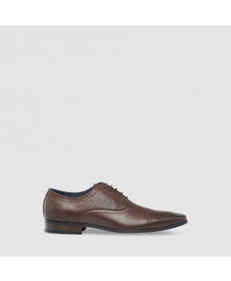 Tarocash Mayall Dress Shoe Chocolate 11