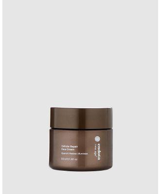 Endota - New Age   Cellular Repair Face Cream - Beauty (n/a) New Age - Cellular Repair Face Cream
