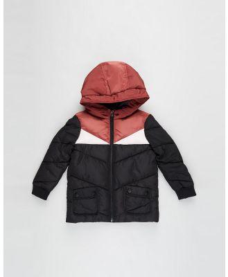 Eve's Sister - Winter Days Jacket   Kids - Coats & Jackets (Multi) Winter Days Jacket - Kids
