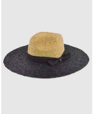 Ford Millinery - Indiana Raffia Wide Brim - Hats (Black) Indiana Raffia Wide Brim