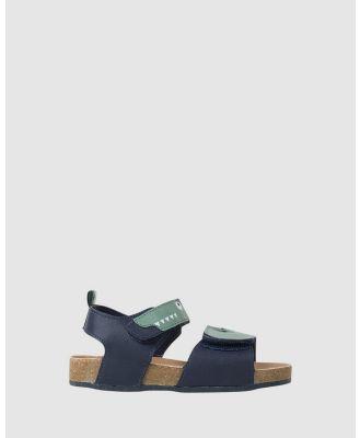 JETT JONES - Chomp - Sandals (Navy/Green) Chomp