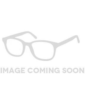 Spitfire Sunglasses Apex Gold/Black